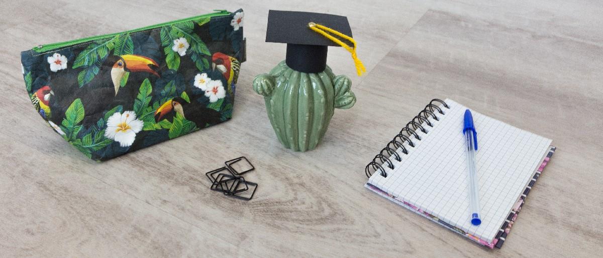 Kaktus mit einem Doktorhut. Dazu eine Tasche mit Tukans und einem Notizblock. Finde dein Abschlussgeschenk.