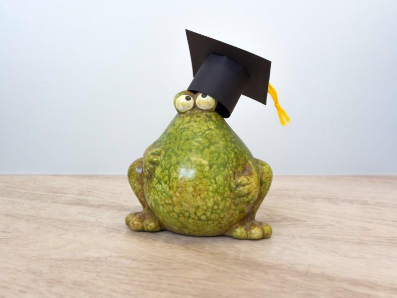 Frosch mit Doktorhut. Abschlussgeschenk selbst gestalten. Doktorhut basteln.