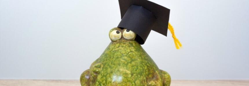 Doktorhut basteln. Frosch mit selbst gebasteltem Hut.